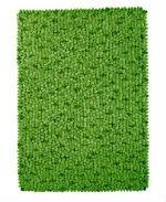 Green pebble rug
