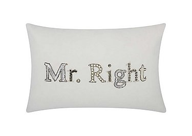 Mr Right Cushion in  on FV