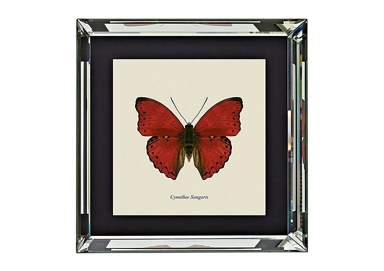 Red Butterfly Art