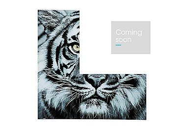 Tiger Face Glass Picture in  on FV