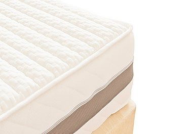 Indulgence 270 Mammoth Mattress in  on FV