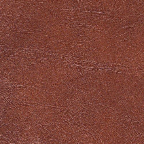 Carolina 2 Seater Leather Sofa in Mb-908c Cognac on Furniture Village