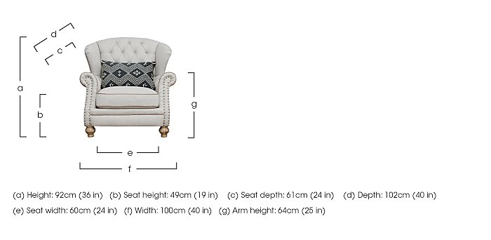 Langar Wing Chair in  on Furniture Village
