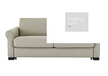 Alcova 2 Seater Leather Sofa Bed in 857 Tortora on FV