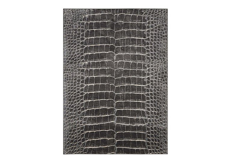 Maxell Rug in Charcoal on FV