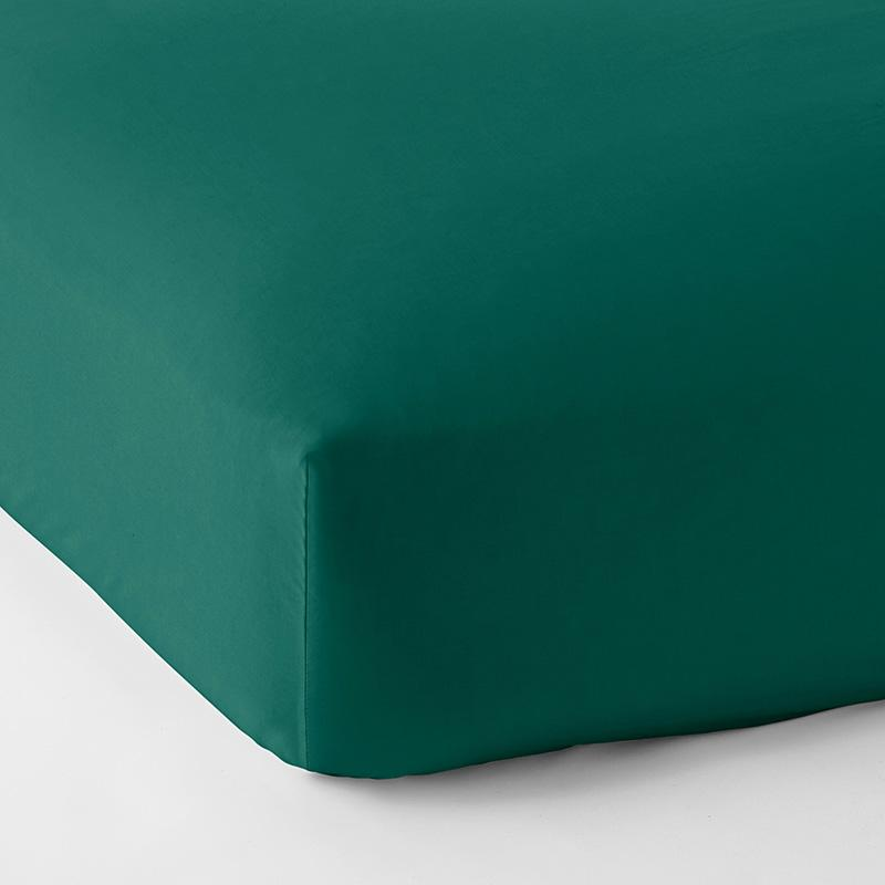Company Cotton Wrinkle-Free Sateen Fitted Sheet