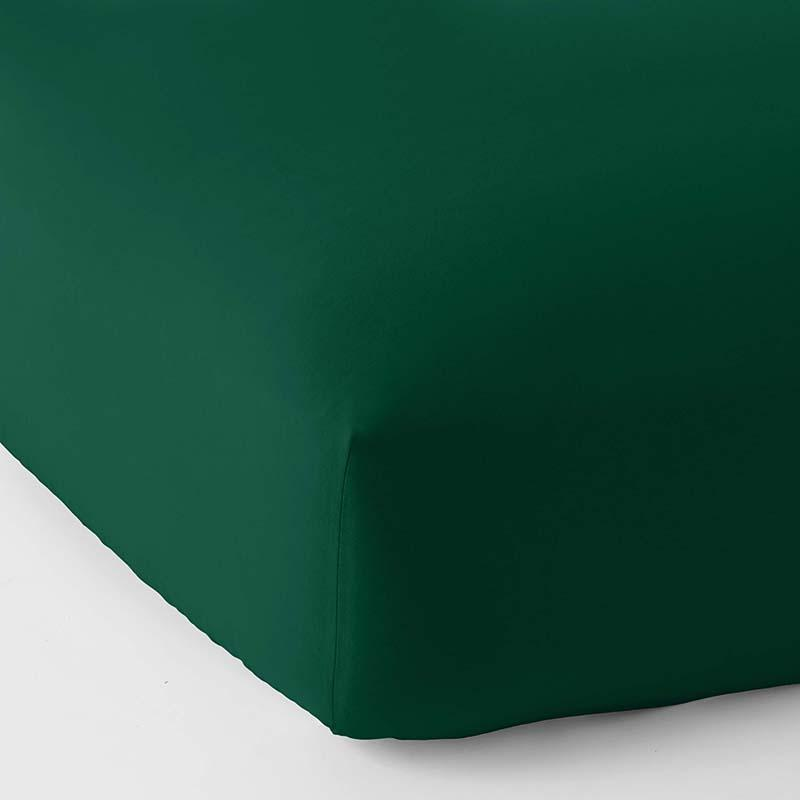 Company Cotton Flannel Fitted Sheet Green, Twin XL