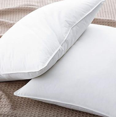 Shop Best Down Pillow