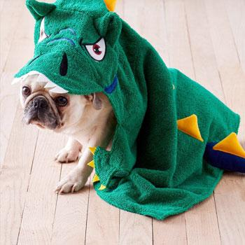 Character Hooded Dog Towels – Dinosaur