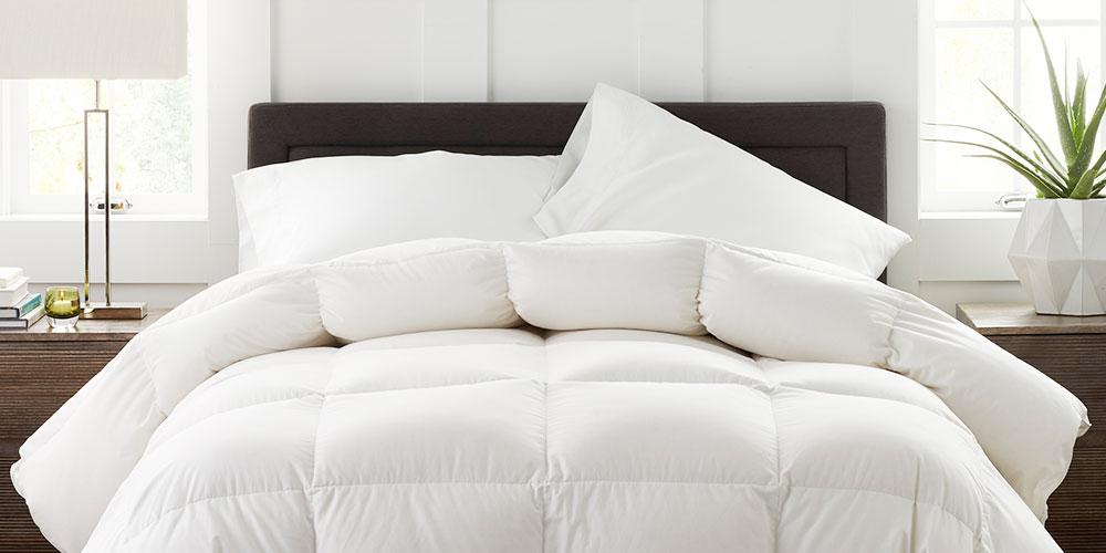 Comforters by The Company Store