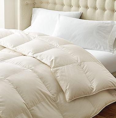 Shop Alberta™ RDS Certified European Down Baffled Comforter