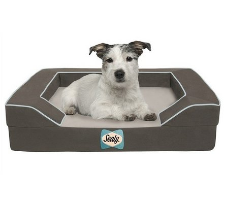 Max Dog Bed Large