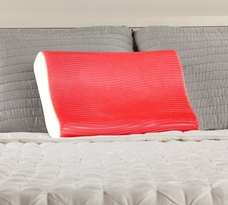 Sealy Memory Foam and Hydraluxe Gel Contour Pillow