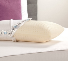 Sealy Posturepedic Latex Bed Pillow