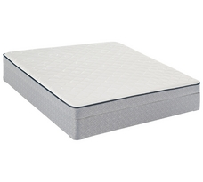 Sealy 5 Inch Emmett Creek Foam Firm Mattress
