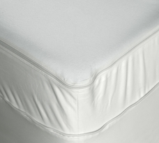Bed Bug Mattress Encasement Protector