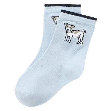Boys Spring Blue Puppy Sock at JanieandJack