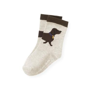 Boys Sand Heather Dog Sock at JanieandJack