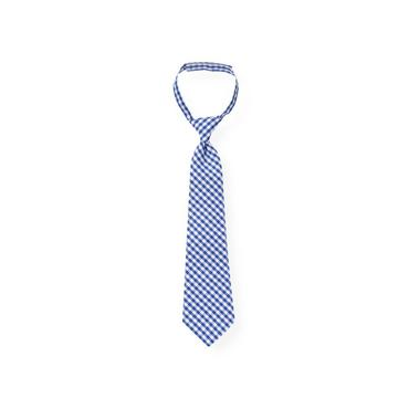 Boys Bright Blue Check Gingham Tie at JanieandJack