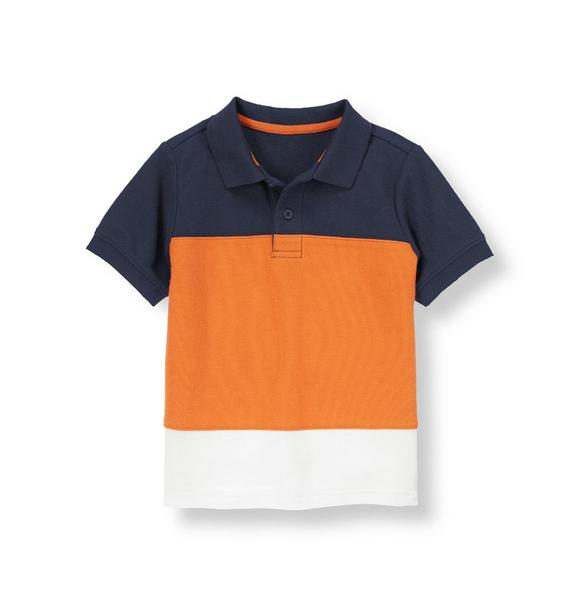 Pieced Colorblock Polo Shirt