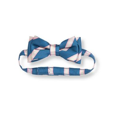 Boys Dapper Blue Stripe Stripe Bowtie at JanieandJack