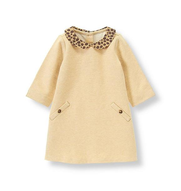 Leopard Collar Dress