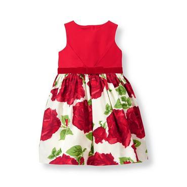 Baby Girl Crimson Rose Rose Sateen Dress at JanieandJack