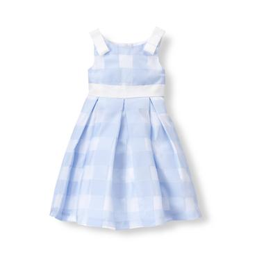 Baby Girl Hydrangea Gingham Gingham Organza Dress at JanieandJack