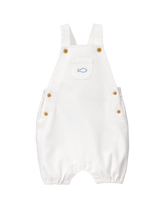 Fish Shortall
