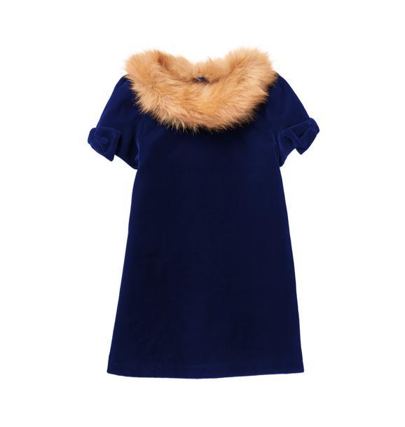 Faux Fur Velvet Dress