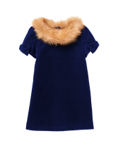 Faux Fur Velvet Dress