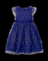 Shimmer Tulle Dress