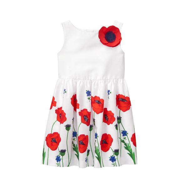 Poppy Border Dress