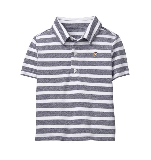Embroidered Striped Polo
