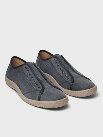 Star Laceless Low Top