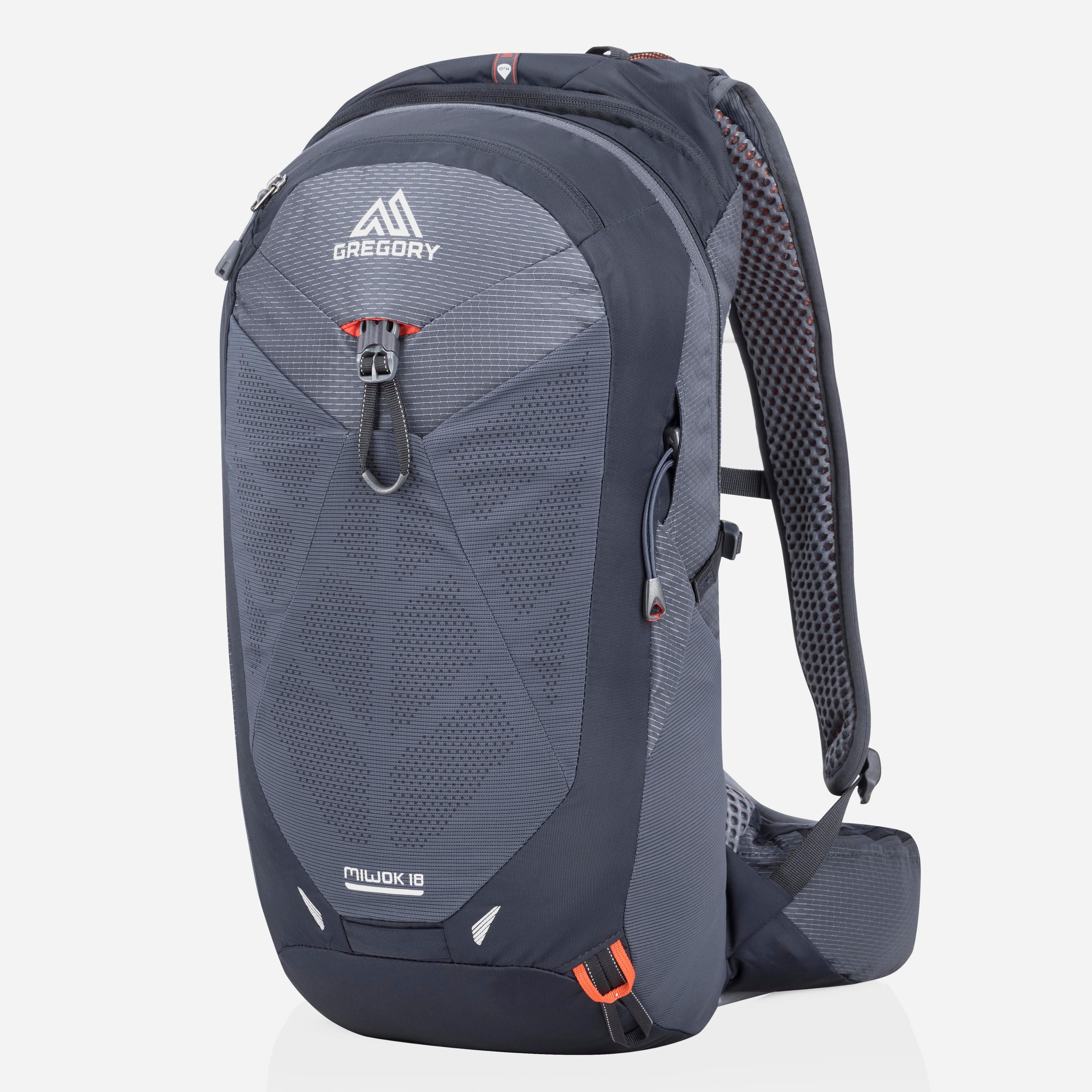 Gregory Miwok 18L Backpack, Black