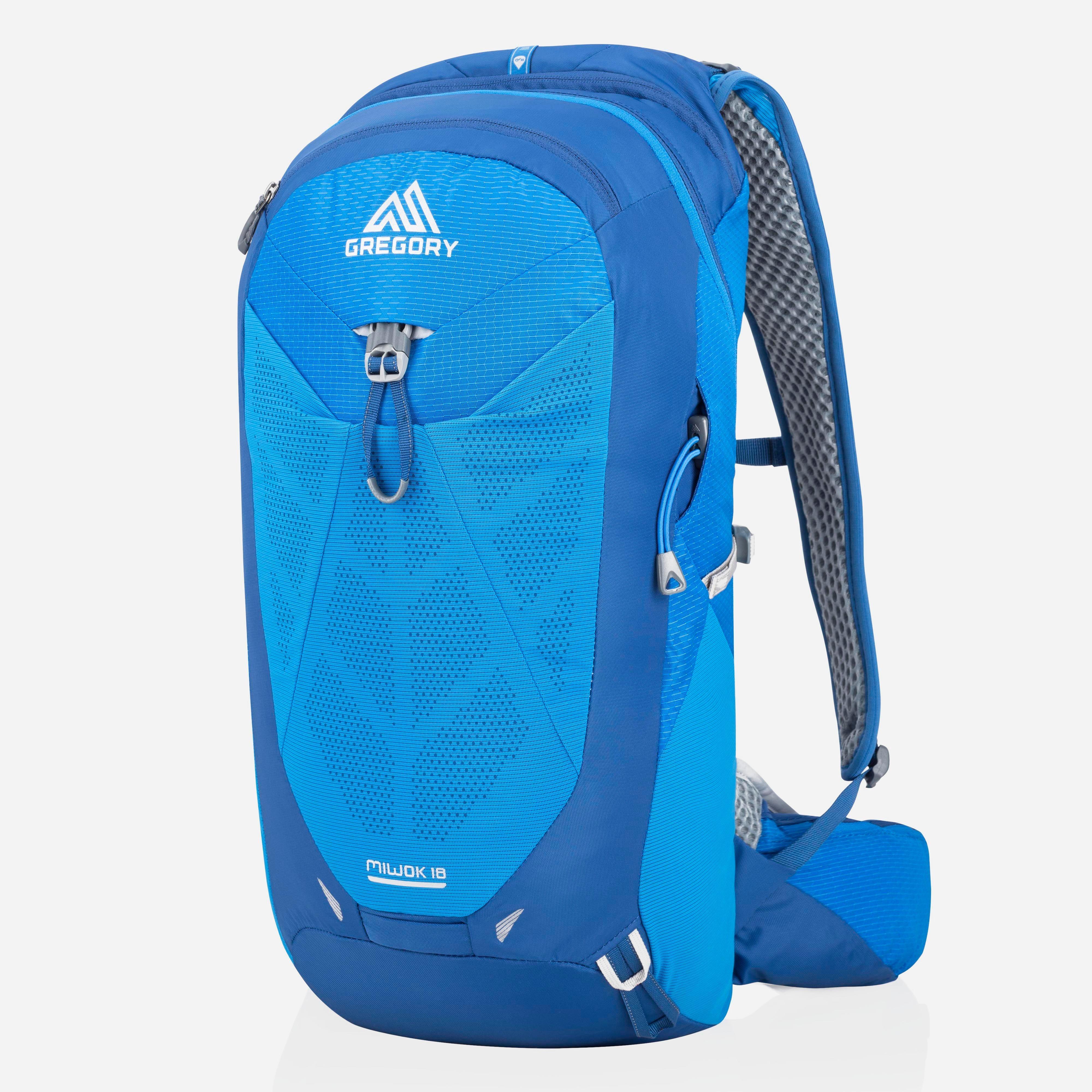 Gregory Miwok 18L Backpack, Blue