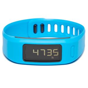 GARMIN Vivofit™ Wellness Band
