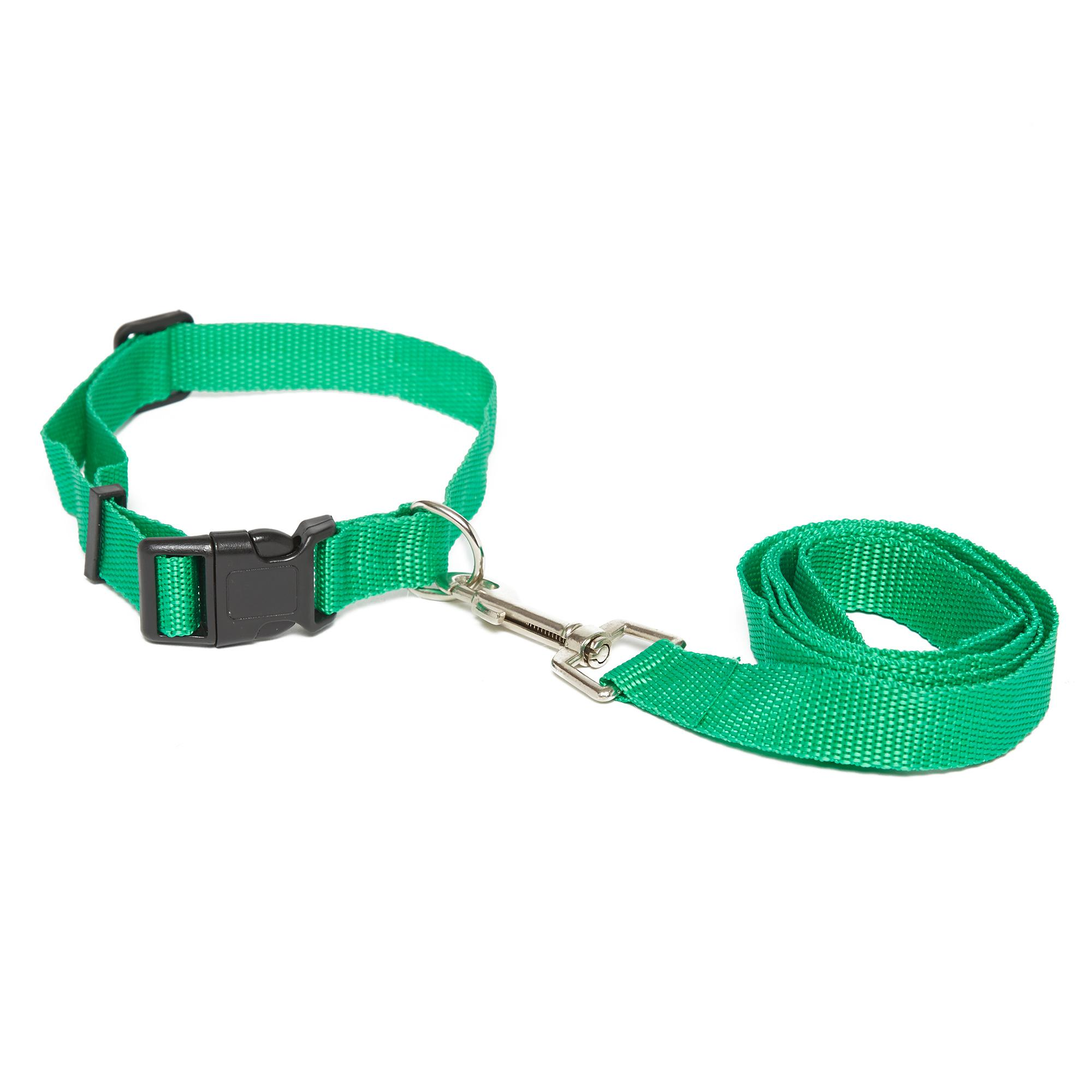 Image of Boyz Toys Dog Lead and Collar, Green