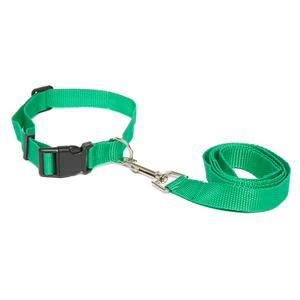 BOYZ TOYS Dog Lead and Collar