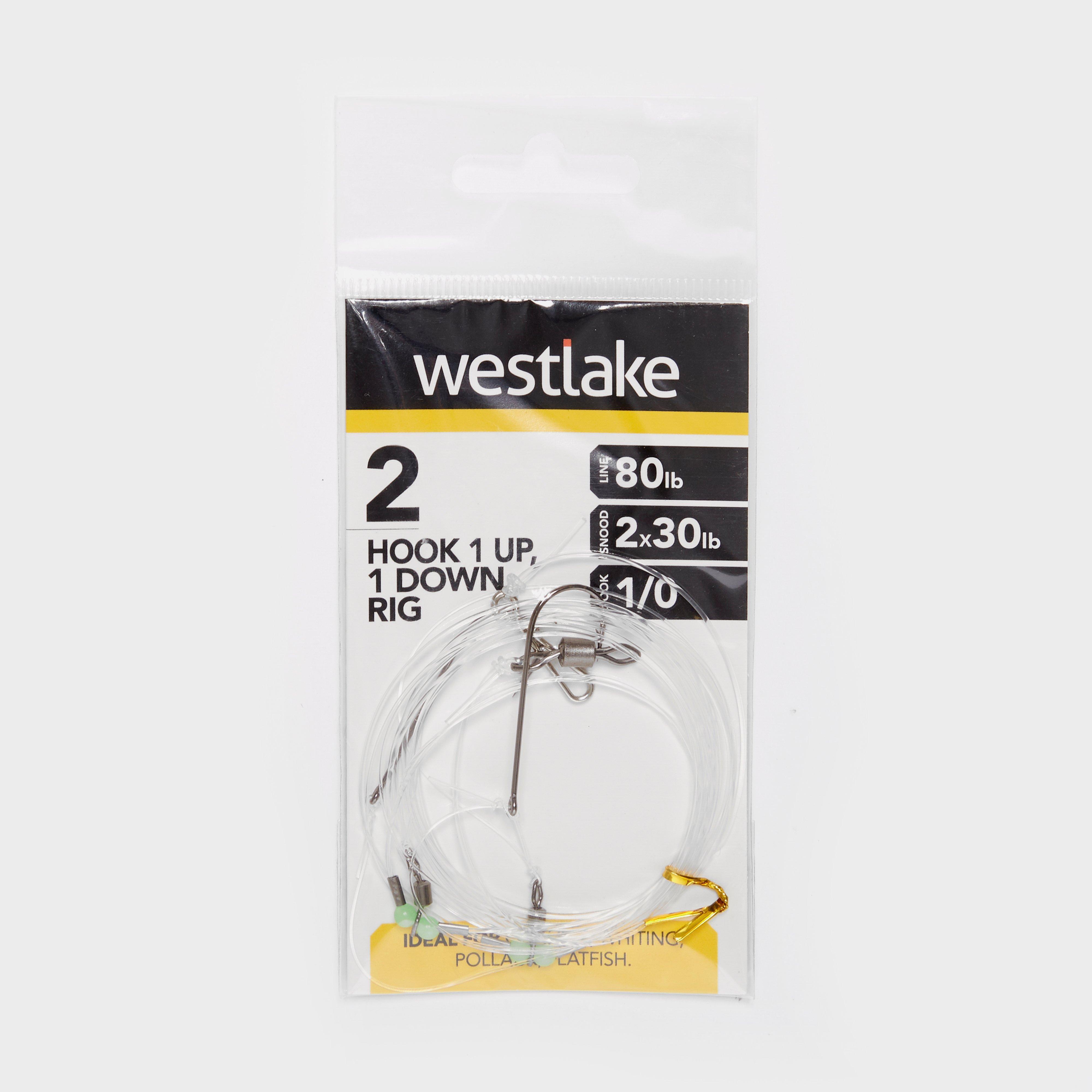 Westlake 2 Hook 1up 1down Rig 1/0 - 0/0  0/0