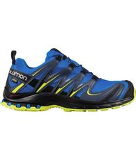 Men's XA Pro 3D Gore-Tex Trail Running Shoe