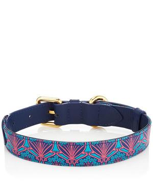 Medium Iphis Dog Collar
