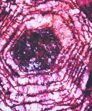 July Ruby Birthstone Silk Satin Scarf