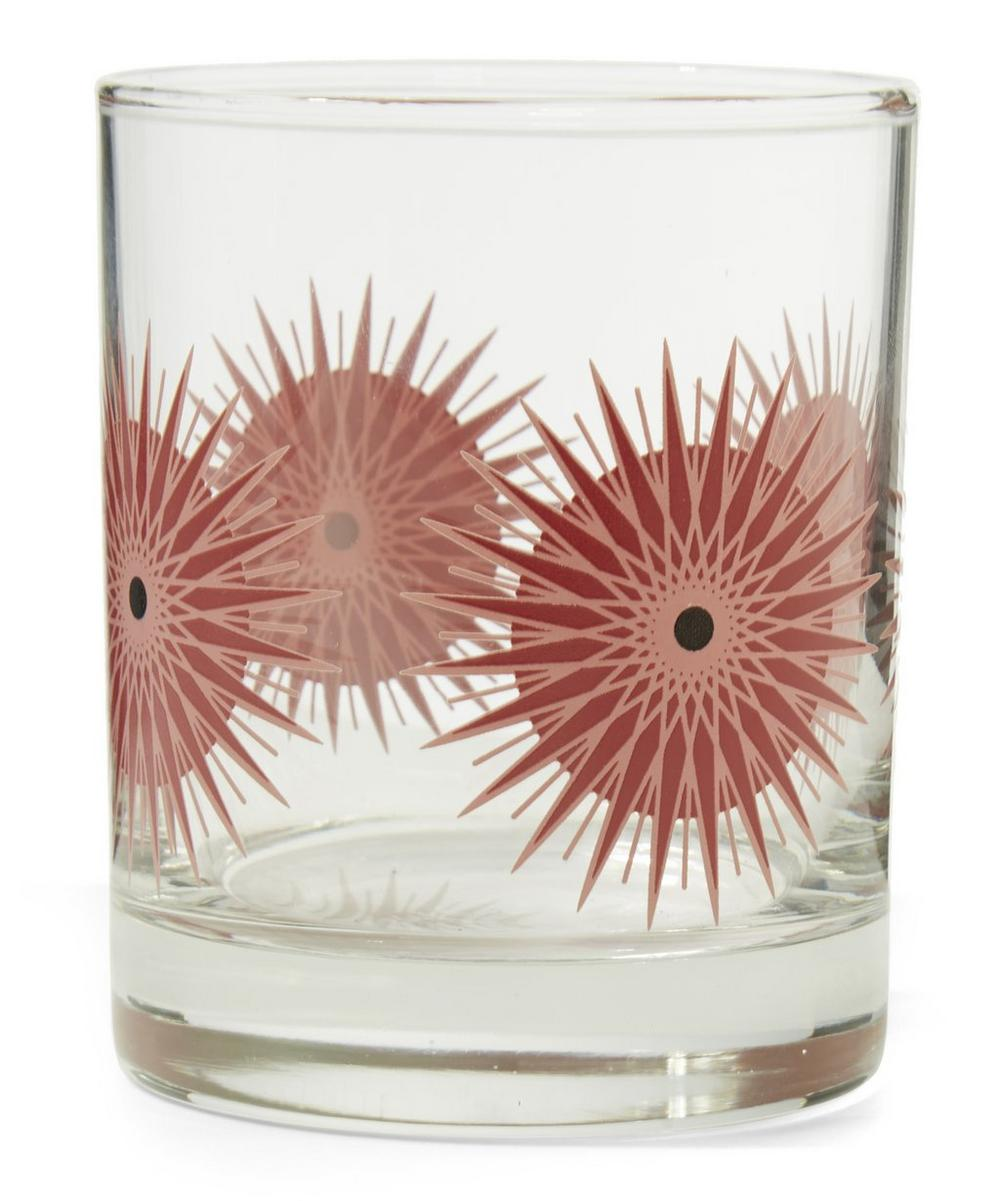 Sea Urchin Spirit Glass