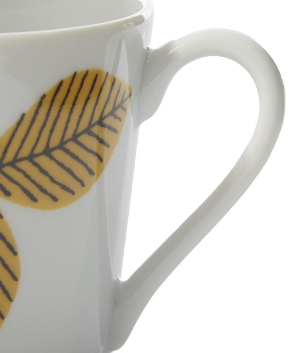 Arbour Harbour Cup