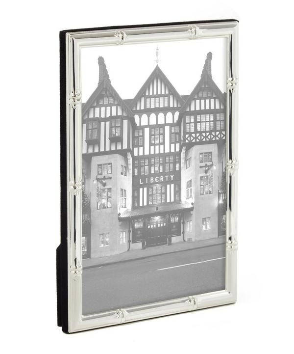 Silver-Plated Bamboo Frame