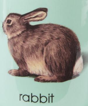 Ladybird Bone China R for Rabbit Mug