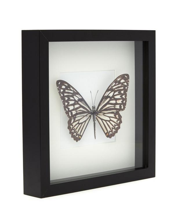 Butterfly V Frame