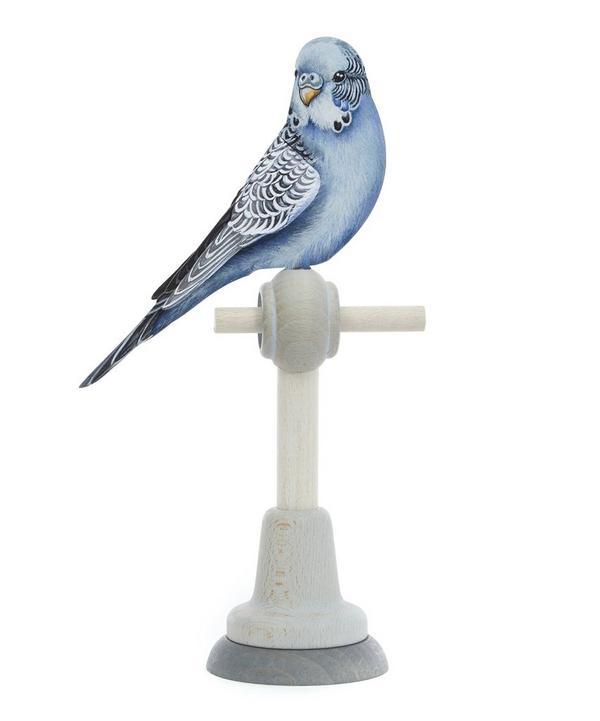 Azul Parrott